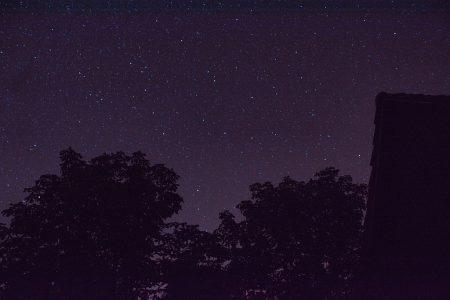 Sternenhimmel über Kastanien und Urgroßvaters Holzschuppen (Foto: Martin Dühning)