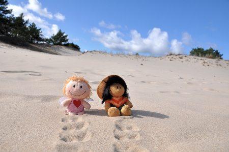 Zwei kleine Wüstenwanderer (Foto: Martin Dühning)