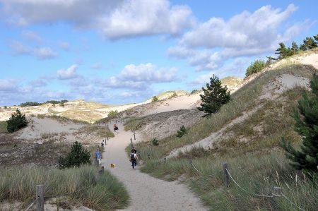 Pfad durch die Dünenlandschaft (Foto: Martin Dühning)