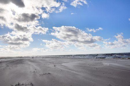 Starke Brise mit Trend zum Sandsturm (Foto: Martin Dühning)