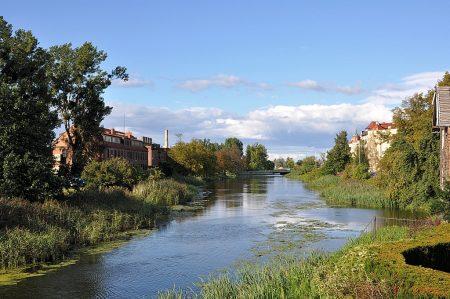 Halb verwilderter Kanal in der Nähe der Danziger Rechtstadt (Foto: Martin Dühning)