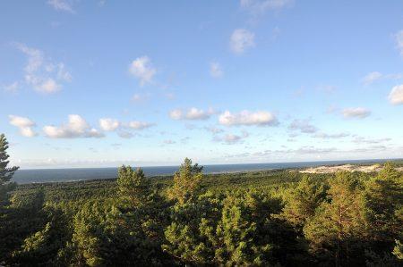 Blick vom Leuchtturm auf die Ostsee (Foto: Martin Dühning)