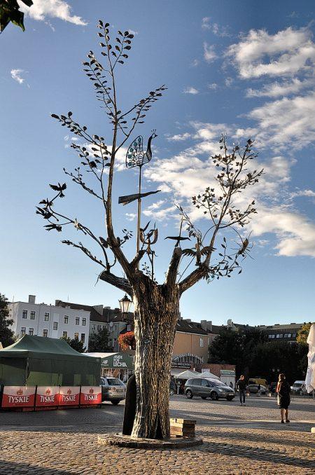 Silberbaum auf dem Kohlenmarkt beim Danziger Theater (Foto: Martin Dühning)