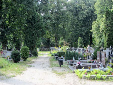 Der Friedhof von Oliva (Foto: Salome Leinarkunion)