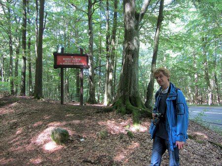 Gefunden! Nach etwas Suchen fanden wir den passenden Weg zur Turmspitze (Foto: Salome Leinarkunion)