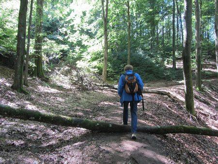 Wandern über Stock und Stein (Foto: Salome Leinarkunion)