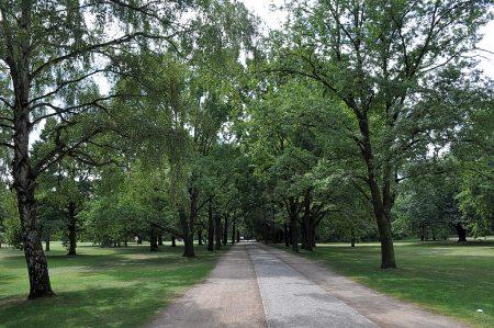 Berliner Tiergarten (Foto: Martin Dühning)