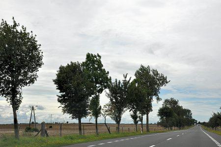 Endlose Straßen durch die polnische Provinz bei grauem Himmel (Foto: Martin Dühning)