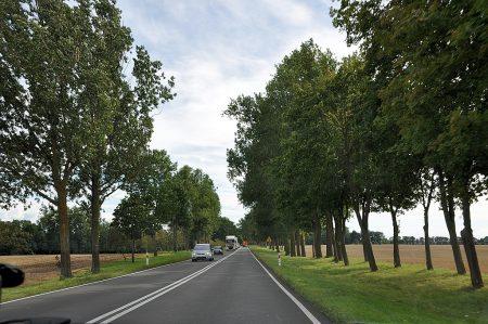 Pastorale Landschaft in der Provinz von Stettin (Foto: Martin Dühning)