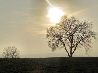 """Novemberstimmung im Klettgau - dazu passt das Album """"Luys I Luso"""" (Foto: Martin Dühning)"""
