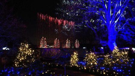 Teil der Illumination sind auch Wasserspiele (Foto: Martin Dühning)