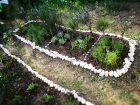 Neuerlicher Kräutergartenversuch