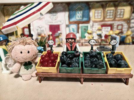 Vizekönigin Luisa präsentiert die ersten Beerenprodukte aus den kaiserlichen Domänen 519 a. C. (Foto: Rosa Dudelspru)