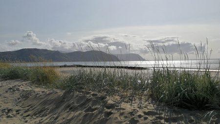 Abschiedsblick zum Strand (Foto: Martin Dühning)