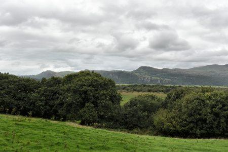 Walisische Landschaft bei Porthmadog (Foto: Martin Dühning).