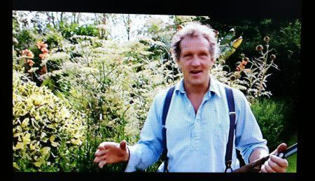"""""""The Joy of Gardening"""" im Fernsehen (Foto: Martin Dühning)"""
