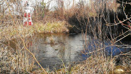 Das heimische Biotop schlummerte Anfang Februar 2019 noch unter Eis (Foto: Martin Dühning).