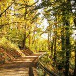 Goldener Oktober am Hochrhein
