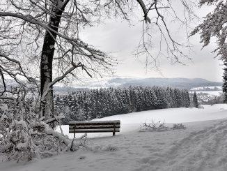 Winterliche Bank im alten Lauchringer Wald, vor langer Zeit (Foto: Martin Dühning)