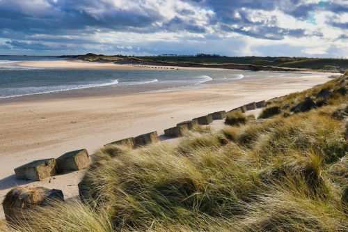 Nordseestrand in Northumberland (Foto: Nick Collins via Pexels)