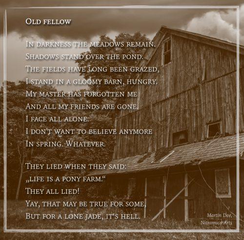 Old Fellow - Visual Poem