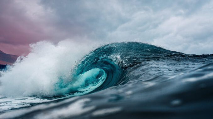 Welle des Ozeans (Foto: Emiliano Arano via Pexels)