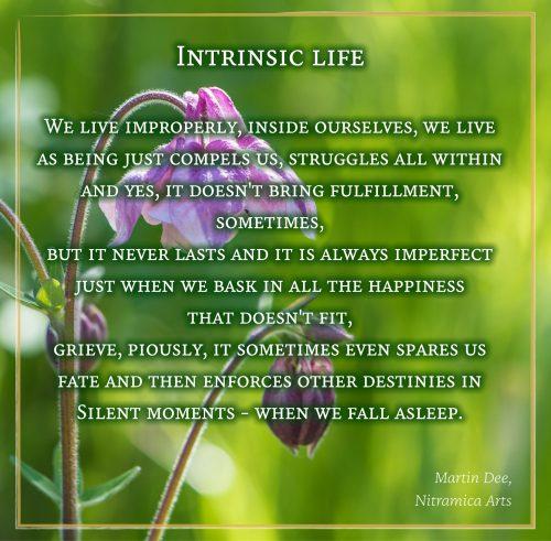 Intrinsic Life - Visual Poem (Grafik und Text: Martin Dühning)