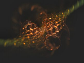 Fraktales Bokeh - manchmal gelingen auch in Chaotica Grafiken mit 3D-Look (Grafik: Martin Dühning)
