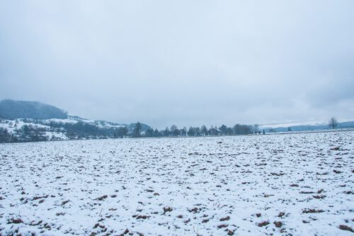 Blick auf den Friedhof Lauchringen im Schnee (Foto: Martin Dühning)
